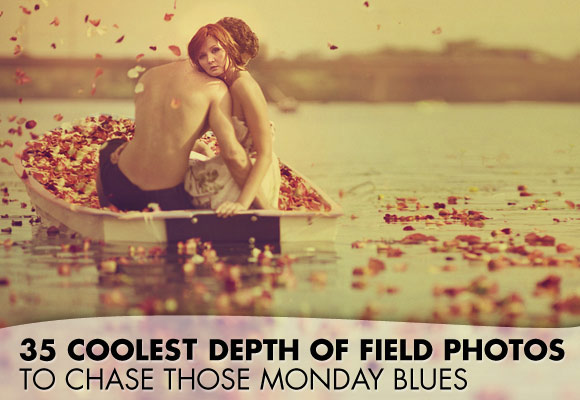35 Depth of field inspiration