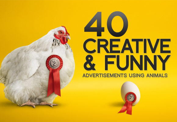 Creative and Funny Animals Advertisements