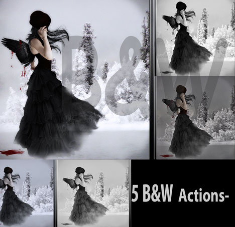 5 Black and White Actions by Amy