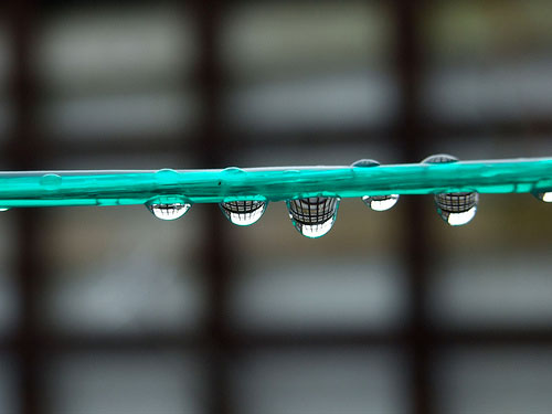 Rain Drop by John Watters