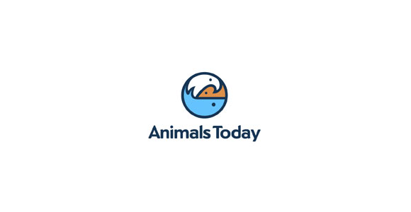 Animalstoday