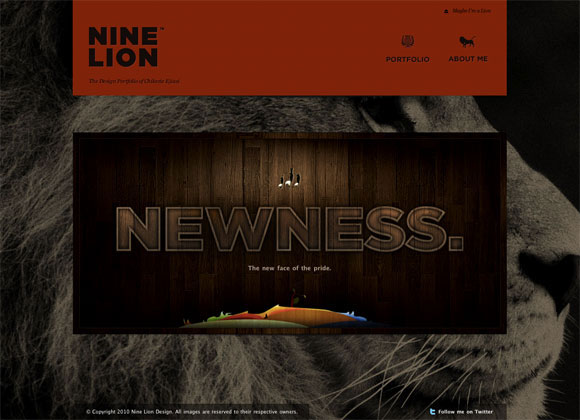 Nine Lion Design