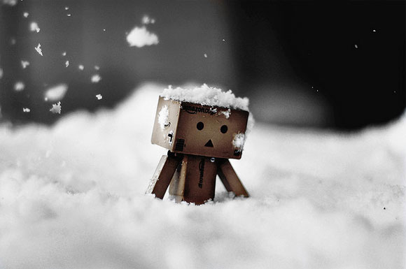 Danbo Trudges To Work