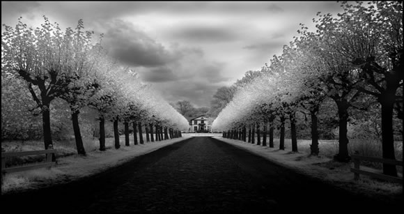 Castle Avenue Infrared