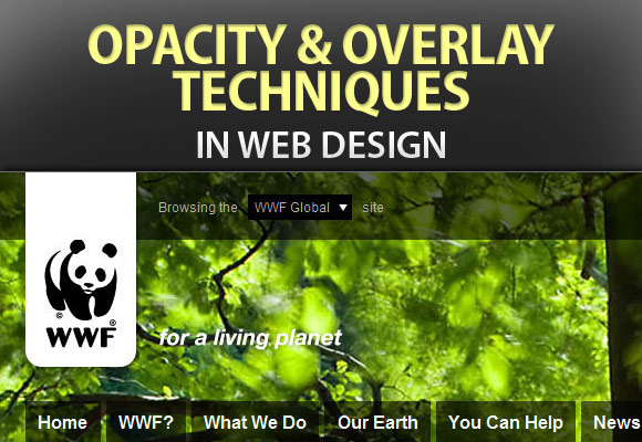 Opacity and Overlay Techniques in Web Design