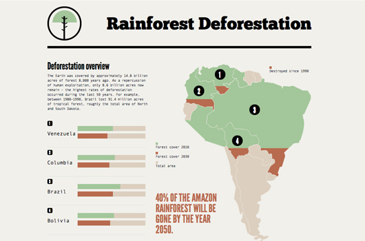Rainforest Deforestation HTML5 Infographic