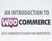 15 Best WooCommerce Extensions For Your eCommerce Site