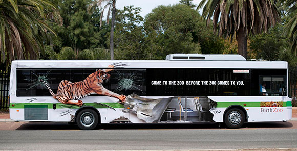 Perth Zoo: Tiger Bus