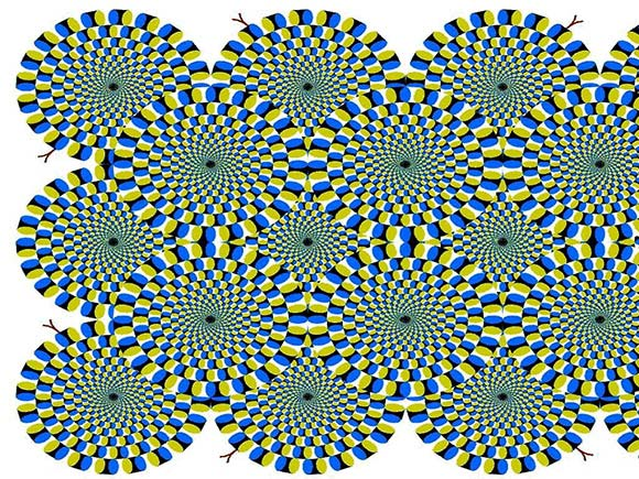 Moving Circles Illusion