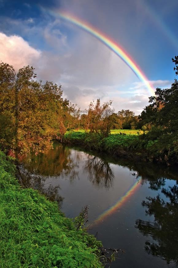Lagan Rainbow