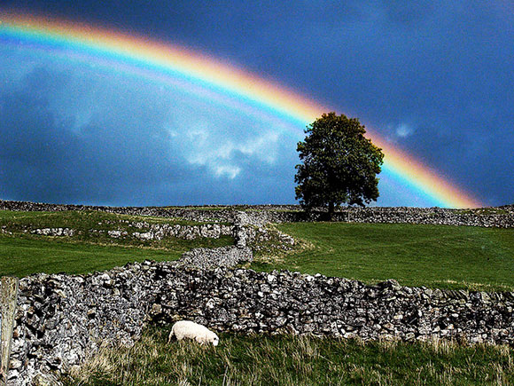 Rainbow over the Dales