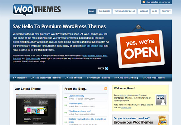 WooThemes 2008