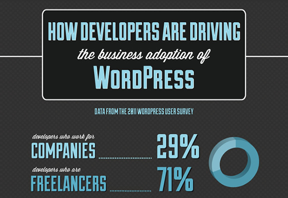 How Developers are Driving the Business Adoption of WordPress