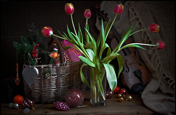 Tulips and Christmas Decorations