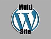 How To Properly Code Your Plugin For A WordPress Multisite