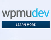 WPMU DEV Review - A Membership with Vast Potential plus Giveaways!