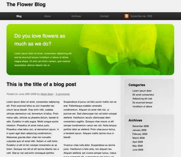Build a Blog Page using HTML5 and CSS3