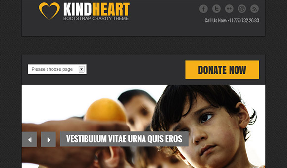 Charity Org. Bootstrap Website Template