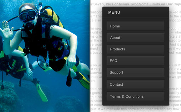 SCUBA Diving and the Defining Principles of Usability