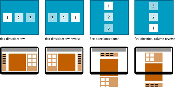 Flexbox Flex Direction