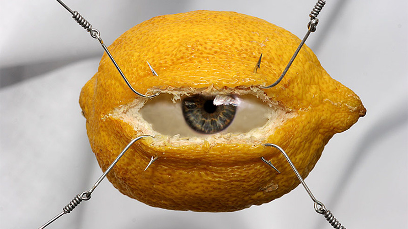 Eye of the Lemon