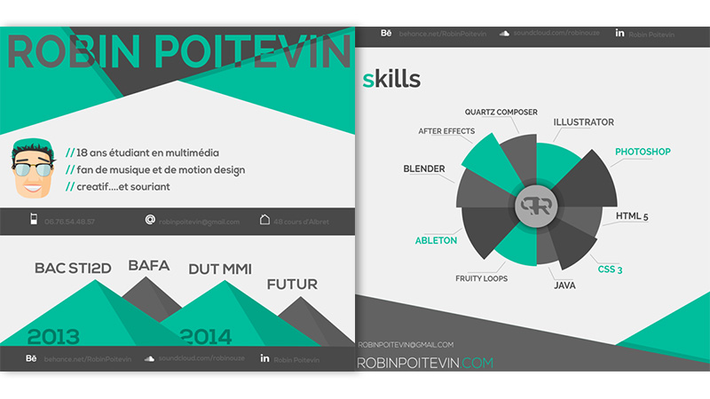 Infographic CV by Robin Poitevin