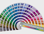 Accurate Color Spectrum – Eye-Catching Pantone-Inspired Projects