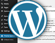 How to Make a Simple WordPress Options Page