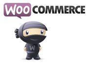 The Best WooCommerce Themes On The Market