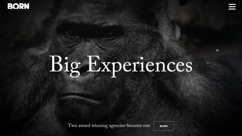 Motivational, Bold and Catchy Smart Taglines in Website Design