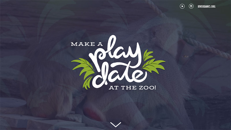 Zoo Play Date