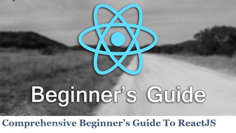 Comprehensive Beginner's Guide to React.js