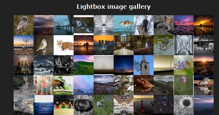 15+ Great jQuery Images Gallery Plugins To Showcase Your Work